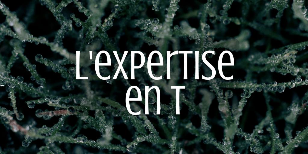 L'expertise en T